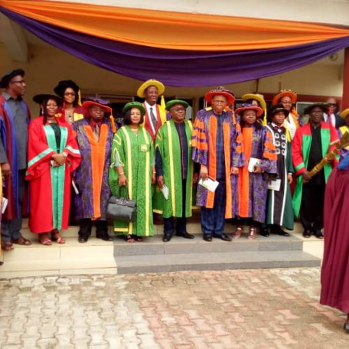 Alvan Ikeoku College of Education Holds 41st Matriculation