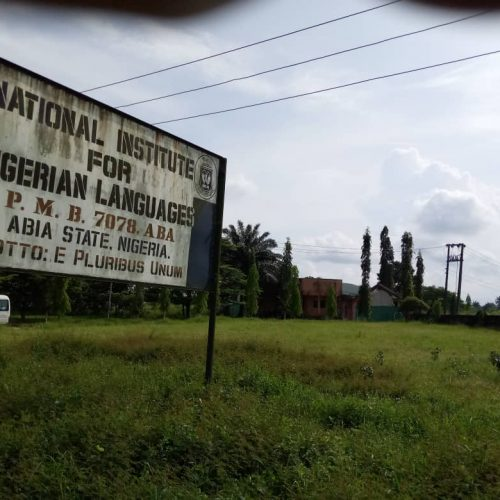Modify National Institute for Nigerian Languages Aba to Enhance Study, Fed Govt urged