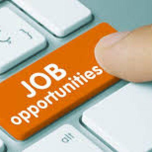 JOB VACANCY: Get Jobs in a Nigeria, US Based Health NGO