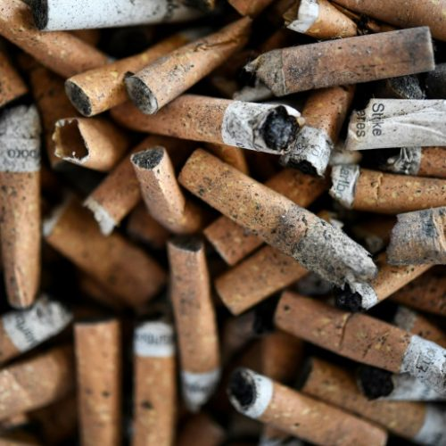France Begins Testing of Nicotine to Ascertain Ability to Prevent Coronavirus