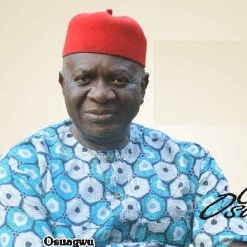 Ohanaeze Presidency: 9 More Igbo Groups Back Prof Osuagwu