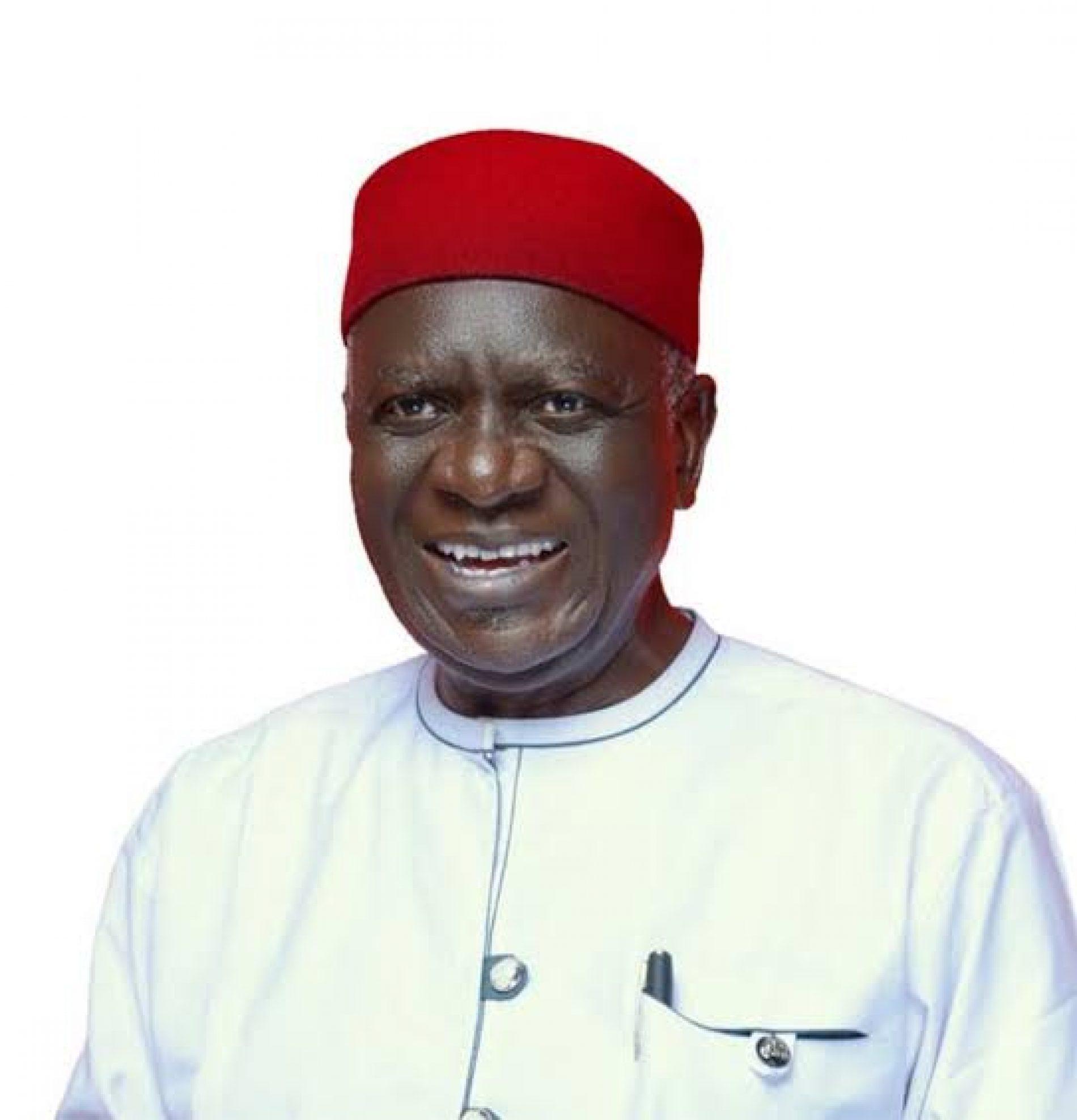 Ohanaeze Election: Osuagwu Secures Endorsement of More Pro-Igbo Groups